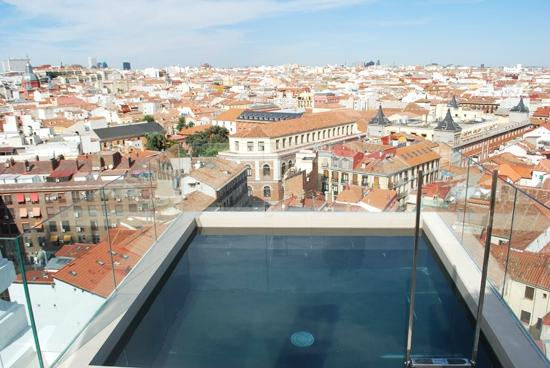 Dear Hotel Madrid Skypool