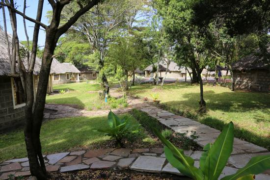 Nalepo Mara Lodge