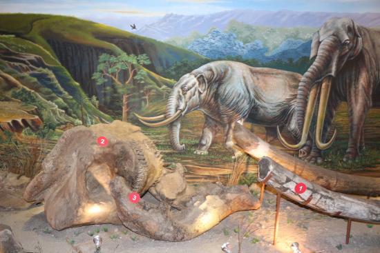 桑義蘭早期人類遺址