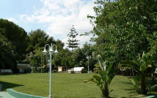 Residence Stella del Mare: giardino