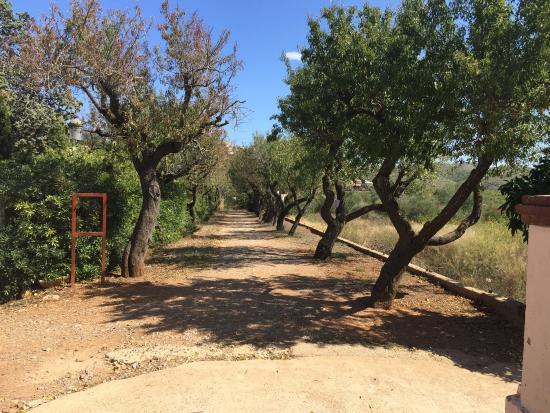 Olivella, Spain: Monasterio budista