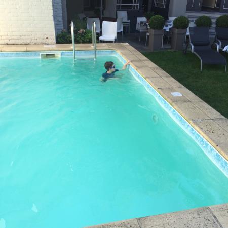 De Drie Koningen : Brilliant swimming pool & St donas apartment has a private terrace.
