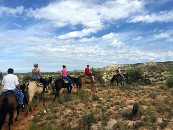Cowboy Way Adventures: horseback riding