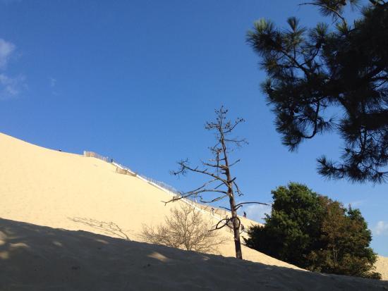 Dune du Pilat: photo3.jpg