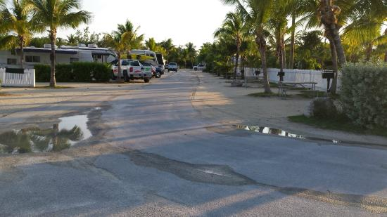Boyd's Key West Campground: Another view of sites