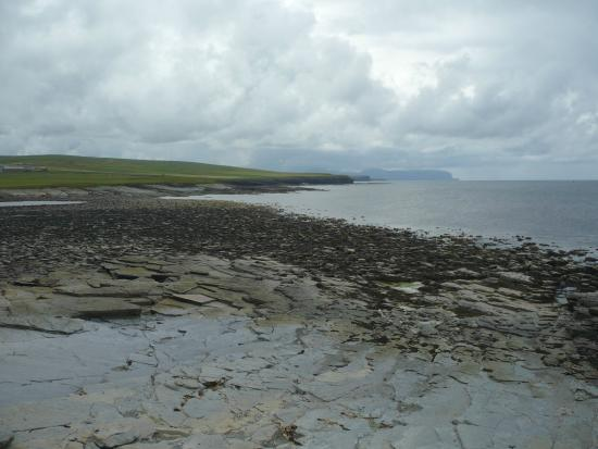 Mainland, UK: Marwick Head RSPB Nature Reserve