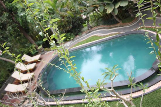 Padma Accommodation: Pama piscina