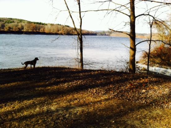 Northfield, MA: We like to go on Sunday's after work year round.  The dogs love it too!