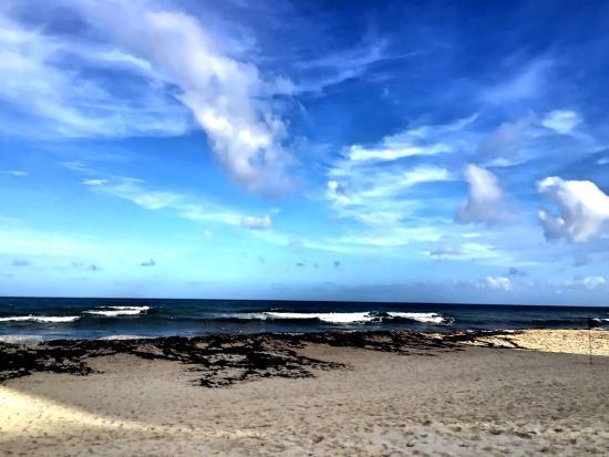 live aqua cancun location map  live  free engine image for live aqua beach resort cancun rooms Live Aqua Cancun Food