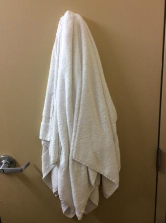 Extended Stay America - Albany - SUNY: Dirty towels on back of bathroom door when we checked in