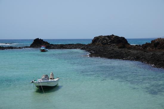 Isla de Lobos : Isla_de_Lobos