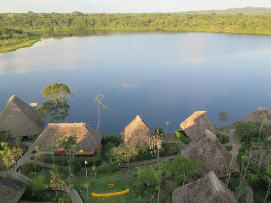 Napo Wildlife Center Ecolodge: View