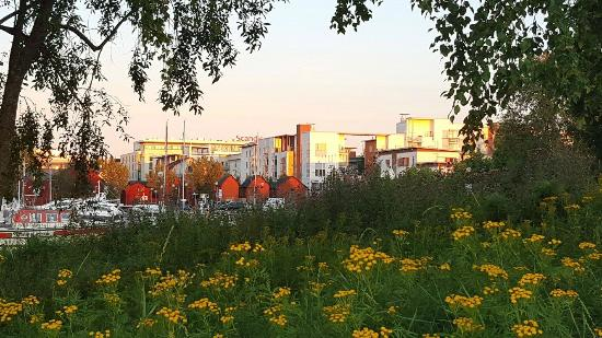 Scandic Oulu: View of the hotel from near kauppahalli waterfront