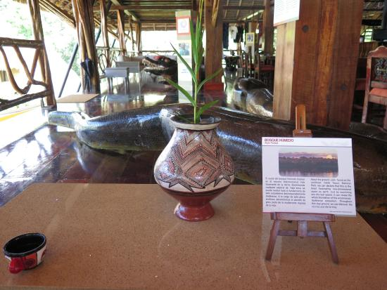 Napo Wildlife Center Ecolodge: Decor