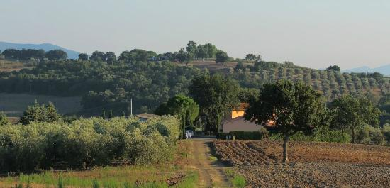 Agriturismo Le Siepi