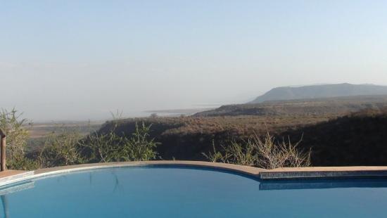 Escarpment Luxury Lodge : Piscina
