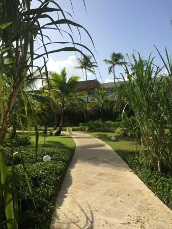 Secrets Royal Beach Punta Cana: Garden