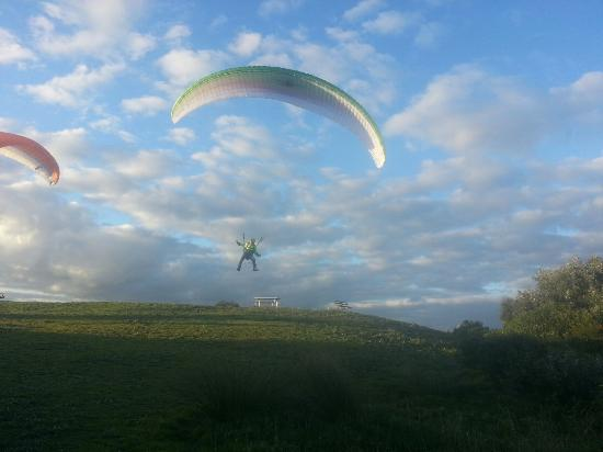 Newcastle Paragliding