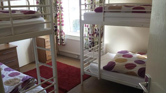 The Bunkroom: bedroom