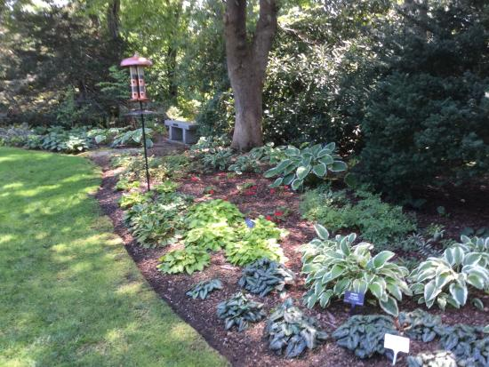 Heritage Museums & Gardens: Border garden