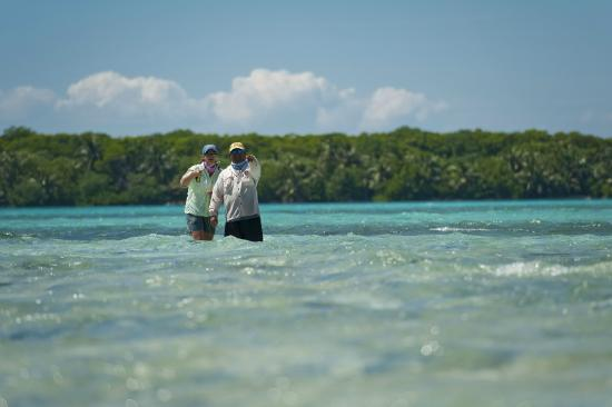 Turneffe Island, Belice: Turneffe Flats offers truly world-class guided fishing