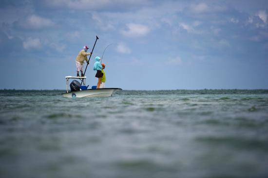 Turneffe Island, Belice: Turneffe Flats guide poling a skiff