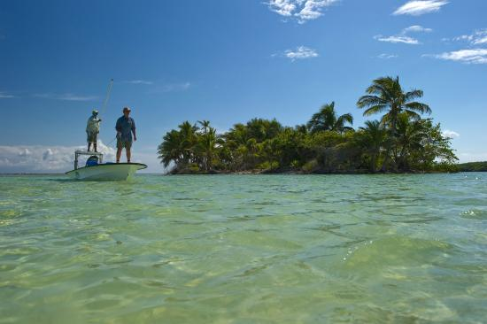 Turneffe Island, Belize: Sight fishing by skiff