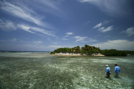 Turneffe Island, Belize: Sight fishing along miles of prolific, wadeable flats