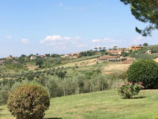 Tenuta Santa Cristina : view from the terrace
