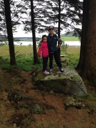 Galloway Forest Park, UK: Beautiful place, on our holidays from North Yorkshire