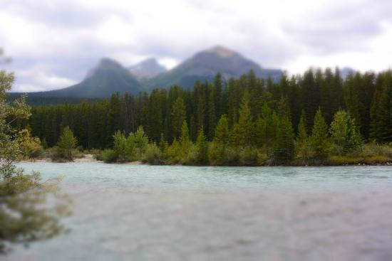 ‪‪Lake Louise Campground‬: river just few 10m away‬