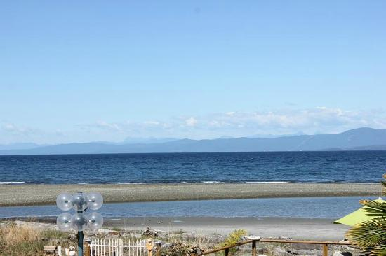 Buena Vista by the Sea: The ocean from my deck