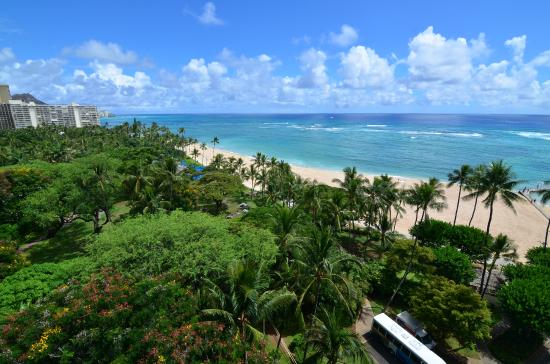 View From The Ocean View Room Alli Toqer Picture Of Hilton