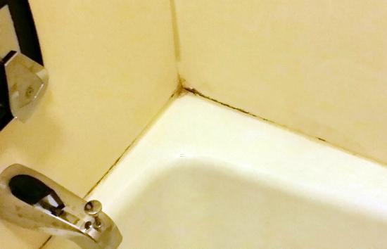 Ridge Motor Inn: Moldy grout in tub-shower