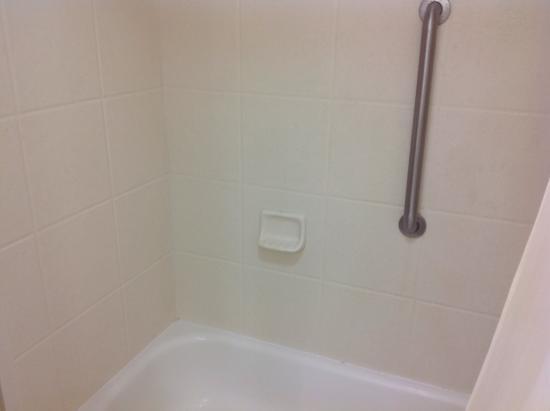 BEST WESTERN PLUS Arbour Inn & Suites: Bathroom