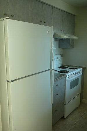 Carmana Plaza: Kitchen with big fridge!