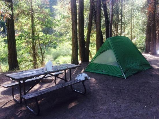 Wawona Campground: Our campsite next to Wawona. All the things on the table are ours, of course! This site was righ