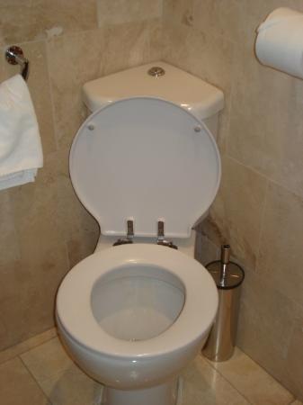 Heathrow Cottages: Corner toilet!