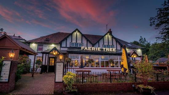 The Faerie Tree Inn