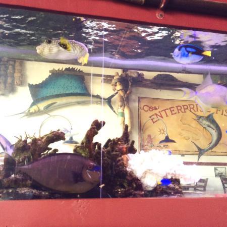 Picture of enterprise fish co santa for Enterprise fish co santa barbara