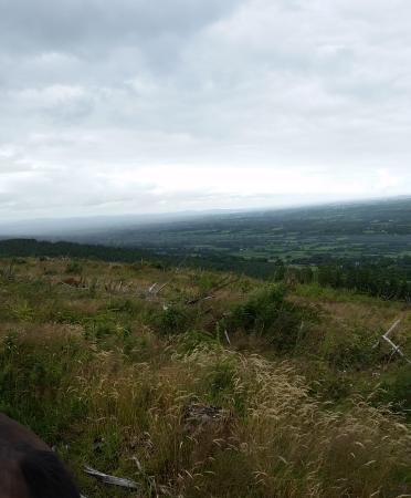 """Kilfinane, Irlanda: Toller Ausblich auf das """" Golden Val """""""
