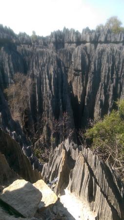 Tsingy de Bemaraha Strict Nature Reserve: Tsingy rock formations