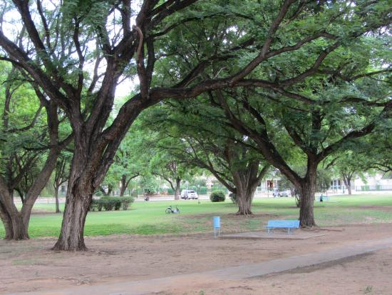 Kupferquelle Resort: This is park at central part of Tsumeb actually
