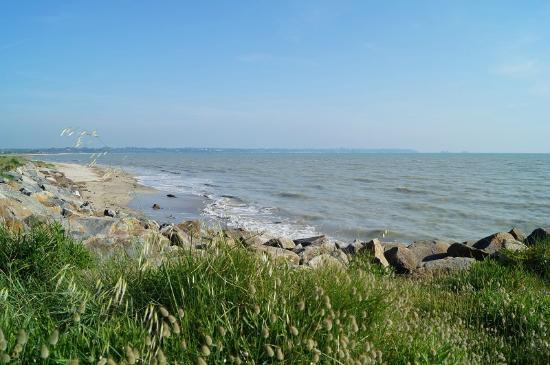 La plage de Saint-Benoît-des-Ondes - Photo de Camping De L\'ile Verte ...