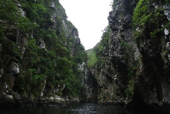 Garden Route, Sudáfrica: tsitsikamma N.P