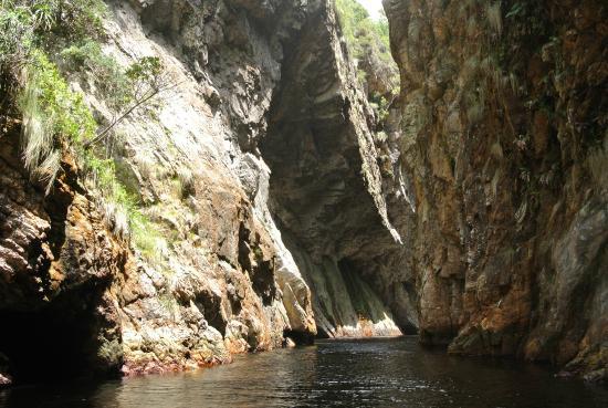 Garden Route, Zuid-Afrika: tsitsikamma N.P