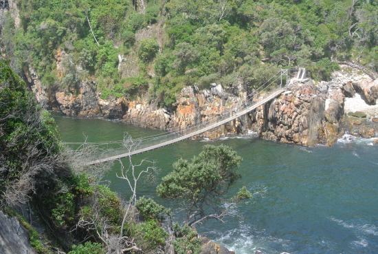 Garden Route, Sydafrika: tsitsikamma N.P