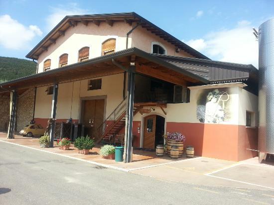 Recchia - Azienda Agricola Fratelli Recchia