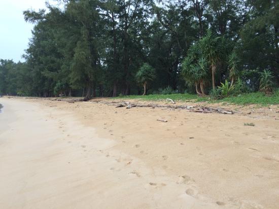 ShowUserReviews g d r Nai Yang Beach Thalang District Phuket.