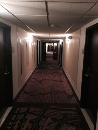 Holiday Inn Corpus Christi Airport Hotel & Conference Center: photo1.jpg
